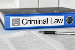 Criminal law binder